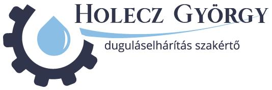 Holecz György duguláselhárítás szakértő